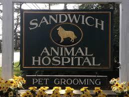 sandwich animal hospital veterinarian