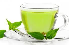 Teh Mint lpkiukiu teh merupakan salah satu tumbuhan yang sudah sejak