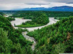 brilliant colors of denali national park alaska wallpapers eagle wallpapers phone sdeerwallpaper hd wallpapers pinterest
