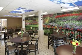 healthcare installations fine art photography cafeteria in a nursing home dte interiors wall