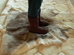 Reindeer Hide Rug Ugg Boots On Reindeer Skin Rug Classic Tall Ugg Boots On R U2026 Flickr
