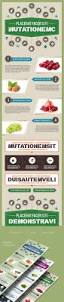 food templates free download 40 free infographic templates to download hongkiat free psd infographics template food theme