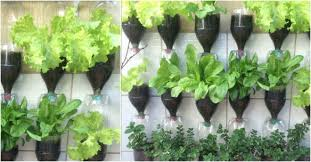 Bottle Garden Ideas How To Make Plastic Bottle Vertical Gardens Diy