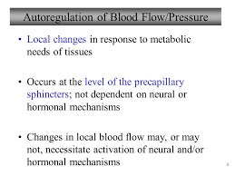 Human Anatomy And Physiology Marieb Hoehn Chapter 19 Blood Vessels Lecture 4 Part 2b Regulation Of Blood