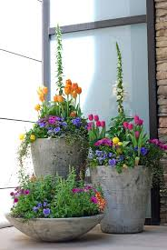 Flowering Patio Plants 348 Best Outdoor Flower Container Ideas Images On Pinterest