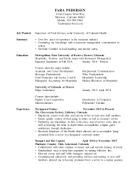 Server Resume Template Free Cheap Application Letter Proofreading Service Gb Example Of Thesis