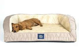 pillow top dog bed serta orthopedic dog bed perfect sleeper memory foam quilted pillow