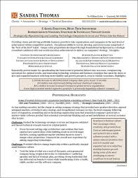 C Level Executive Resume Samples by Related Free Resume Examples C Level High Tech Industry Executive