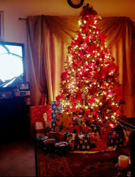 Cashmere Trees Christmas Sale - 7ft pre lit brookfield cashmere fir tree for sale in euless tx