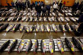Japanese Fish Flag Tsukiji Fish Market Relocation Facing Delay By New Gov Yuriko