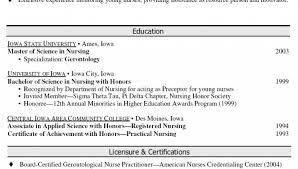 Professional Summary Examples For Nursing Resume by Resume Career Summary Examples Professional Summary Examples