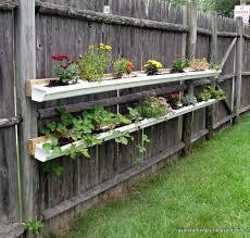 gutter garden strawberries fasci garden