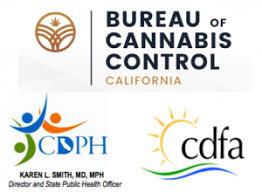 bureau of consumer affairs ca cannabis licensing agencies release responses to