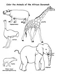 the most incredible african animals coloring pages intended to