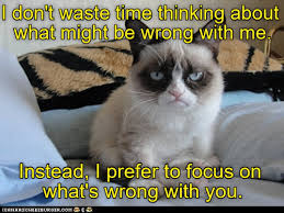 Grumy Cat Memes - lolcats grumpy cat lol at funny cat memes funny cat pictures