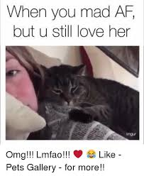 U Still Mad Meme - 25 best memes about when you mad when you mad memes