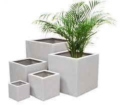 indoor garden pots 28 images lushmodern cactus garden cement