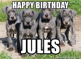 Great Dane Meme - happy birthday jules great dane pups meme generator