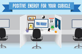 What Plants Are Cubicle Friendly by Positive Energy For Your Cubicle In 5 Easy Steps