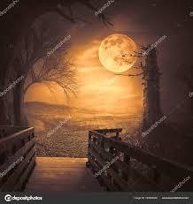 Halloween Backdrop Spooky Woods With Moonligt As Halloween Backdrop Scene U2014 Stock