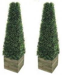 topiary trees artificial boxwood topiary trees foter