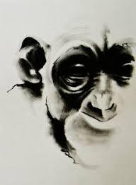 animal drawings original animal artwork saatchi art
