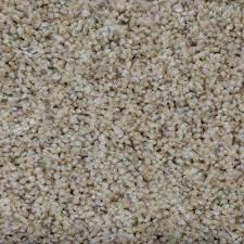 home decorators collection 1 87 carpet samples carpet