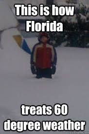 Florida Winter Meme - luxury funny florida memes florida winter meme memes kayak wallpaper