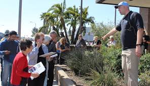 mesa water district learn about turf removal and water efficient