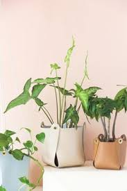 Diy Hanging Planters by Hanging Planters You Can Make Yourself Diy Hanging Planter