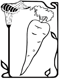 preschool carrot coloring page realistic coloring pages preschool