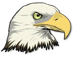 philippines eagle tattoo drawn white tailed eagle eagle head pencil and in color drawn