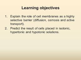 movement through the membrane ppt download