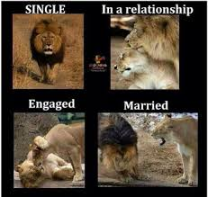 Funny Marriage Meme - after marriage funny meme funny mania