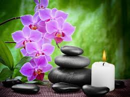 green spa background with orchids orchids pinterest cards