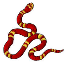 king snake embroidery designs machine embroidery designs at