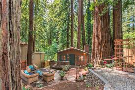 Tiny Cabin by Tiny Cabin Amidst La Honda Redwoods Asks 475k Curbed Sf