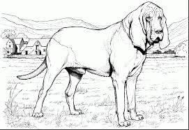 remarkable german shepherd dog coloring pages with german shepherd