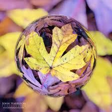 san francisco bay area photography john harrison photography www