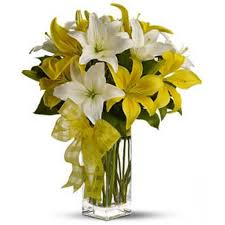white lillies 10 white yellow lilies online shop dubai gifts flowers to
