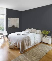 british paints ace of spades grey colour chart u0026 palette