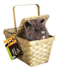 halloween gift baskets adults amazon com wizard of oz dorothy u0027s toto in a basket toys u0026 games