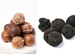 where can you buy truffles chocolate truffles or truffles underground the reluctant gourmet
