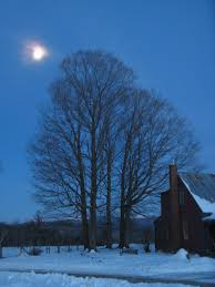 Vermont where to travel in january images Animal instinct moonlight in vermont JPG