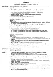 resume template for managers executives den manager resume sles free skills based it project pdf dynamic