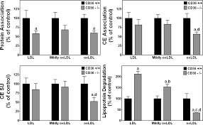 mouse cd36 has opposite effects on ldl and oxidized ldl metabolism