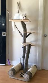 Tree Branch Bookshelf Diy This Is Fabulous A Tree House For Cats One Of These Days I U0027ll