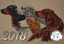 new year s setters chionship show 2017 critique