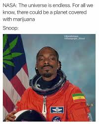 Smoke Weed Everyday Meme - smoke weed everyday album on imgur
