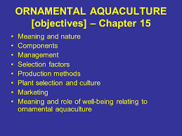 ornamental aquaculture objectives chapter 15 meaning and